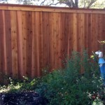 Western Red Cedar Privacy Fencing