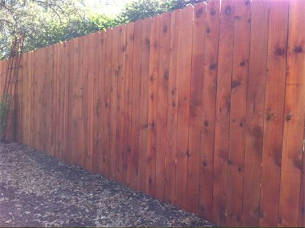 6 foot Western Red Cedar Privacy Fence With Cedar Stain